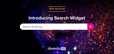 Nuevo widget de búsqueda